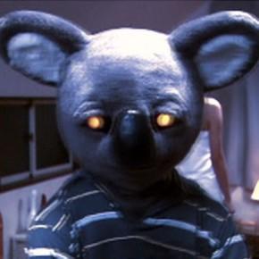 Killer... Koala?
