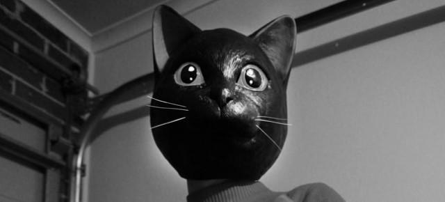 Cat Sick Blues, a Kickstarter from (most of) the Mondo Exploito team