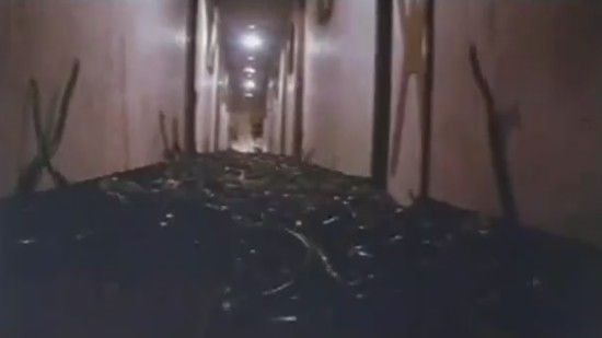 Corridor Snakes_000000